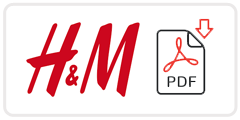H&M Job Application Form Printable PDF