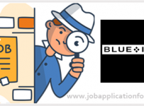 Blue Inc Jobs