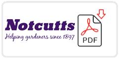 Notcutts Job Application Form Printable PDF