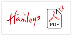 Hamleys Job Application Form Printable PDF