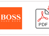 Hugo Boss Job Application Form Printable PDF