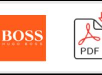 Hugo Boss Job Application Form Printable PDF