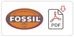 Fossil Job Application Form Printable PDF
