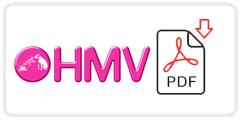 HMV Job Application Form Printable PDF